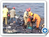 Ennore Kamaraj Port Oil Spill - 2017
